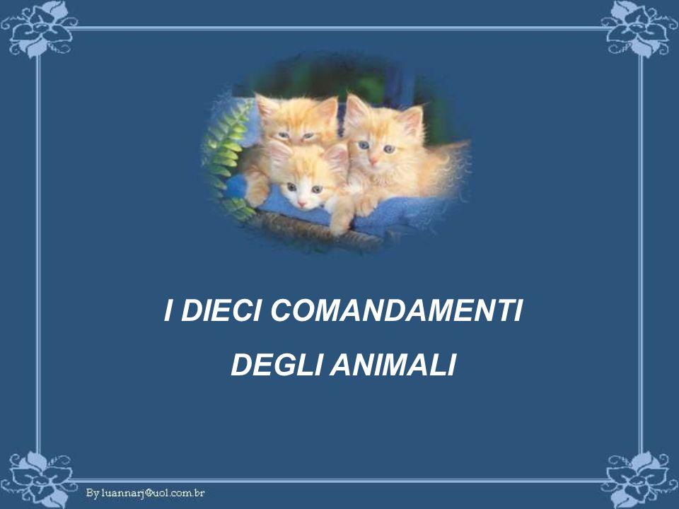 I DIECI COMANDAMENTI DEGLI ANIMALI