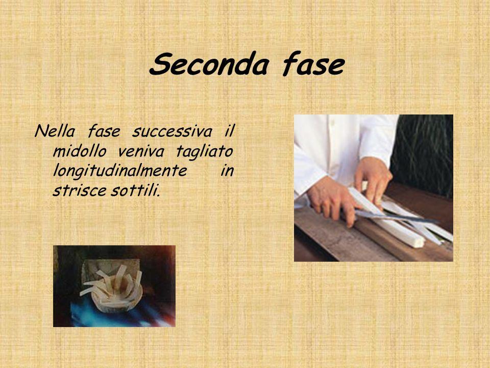 Seconda fase Nella fase successiva il midollo veniva tagliato longitudinalmente in strisce sottili.