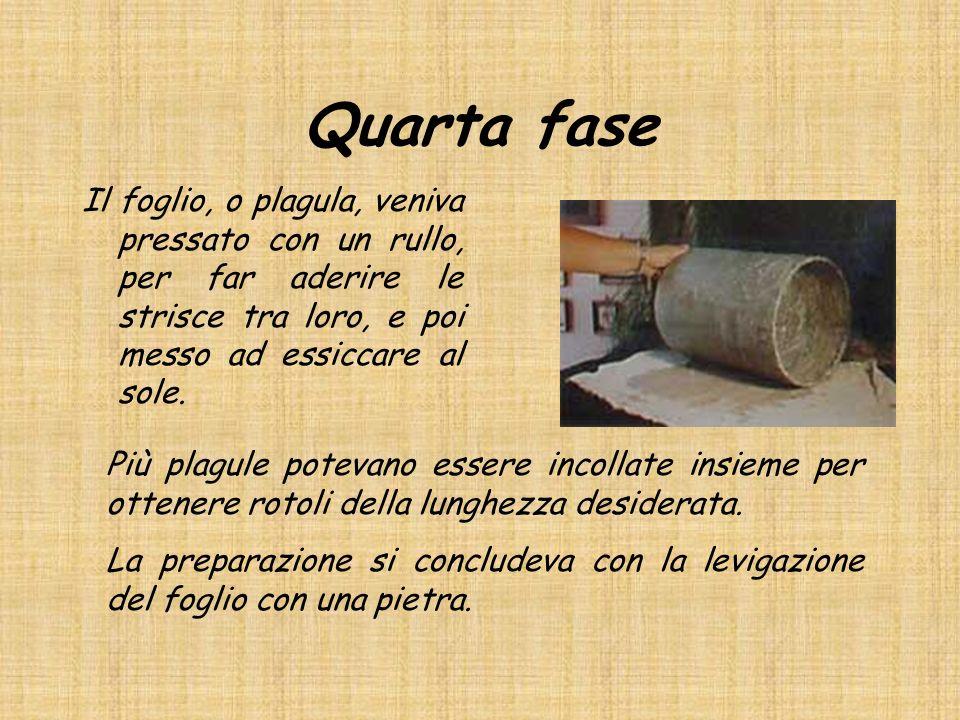 Quarta fase Il foglio, o plagula, veniva pressato con un rullo, per far aderire le strisce tra loro, e poi messo ad essiccare al sole.
