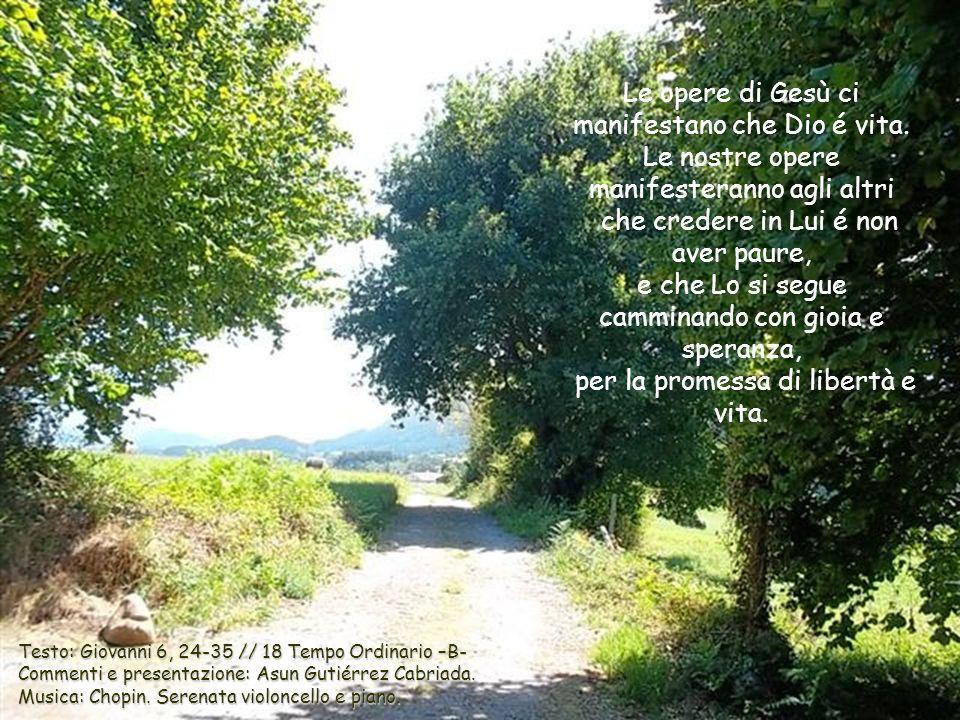 Le opere di Gesù ci manifestano che Dio é vita