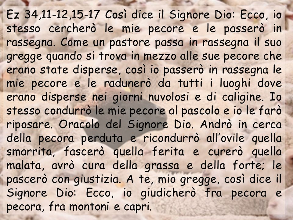 Ez 34,11-12,15-17 Così dice il Signore Dio: Ecco, io stesso cercherò le mie pecore e le passerò in rassegna.