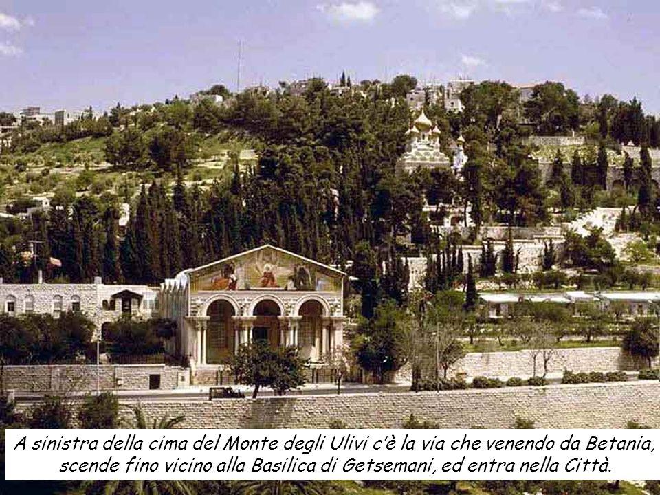 scende fino vicino alla Basilica di Getsemani, ed entra nella Città.