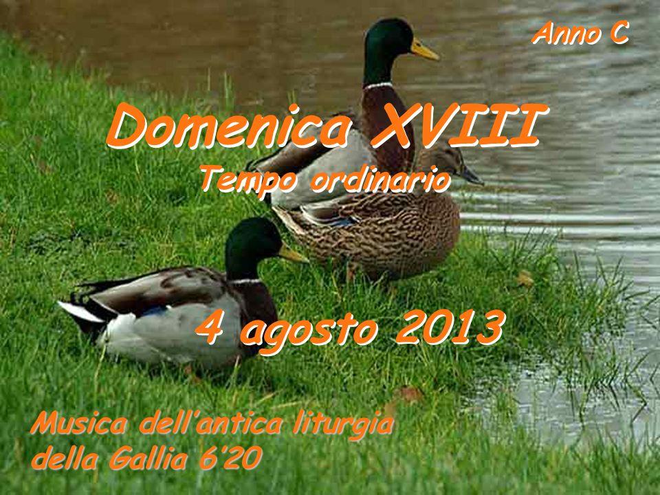 Domenica XVIII 4 agosto 2013 Tempo ordinario
