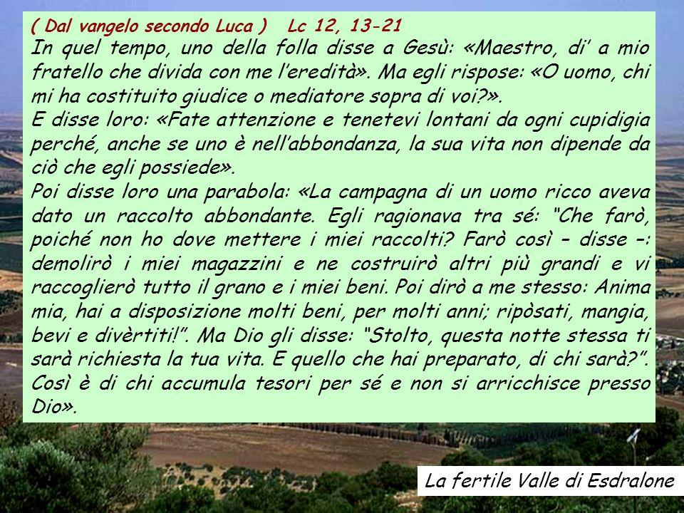 ( Dal vangelo secondo Luca ) Lc 12, 13-21