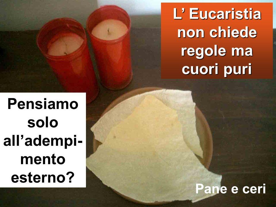 L' Eucaristia non chiede regole ma cuori puri