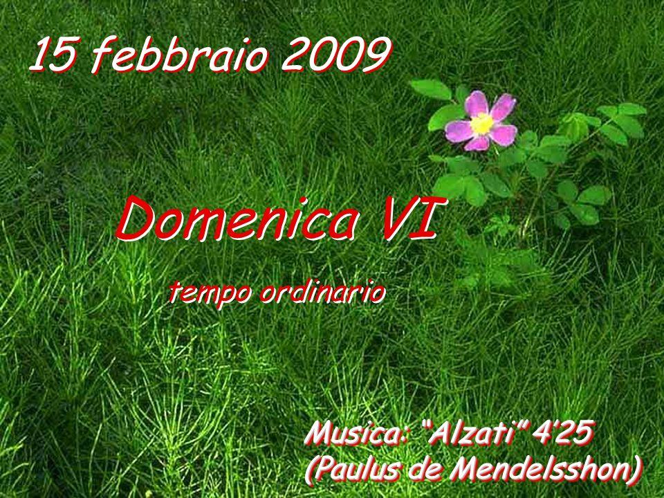 Domenica VI 15 febbraio 2009 tempo ordinario