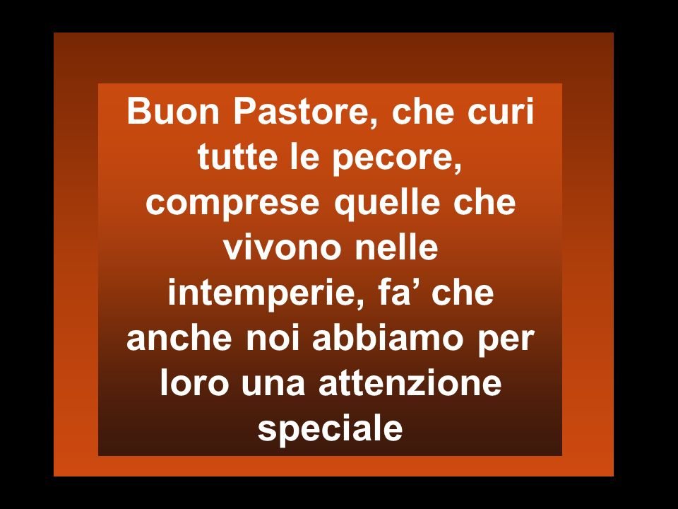 Buon Pastore, che curi tutte le pecore, comprese quelle che vivono nelle intemperie, fa' che anche noi abbiamo per loro una attenzione speciale