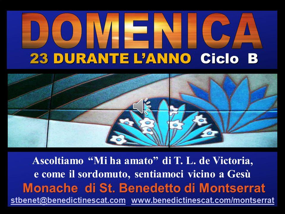 23 DURANTE L'ANNO Ciclo B DOMENICA