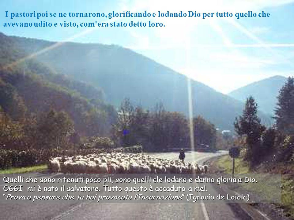 I pastori poi se ne tornarono, glorificando e lodando Dio per tutto quello che avevano udito e visto, com era stato detto loro.