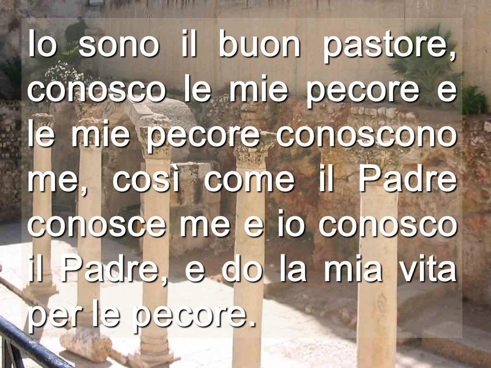 Io sono il buon pastore, conosco le mie pecore e le mie pecore conoscono me, così come il Padre conosce me e io conosco il Padre, e do la mia vita per le pecore.