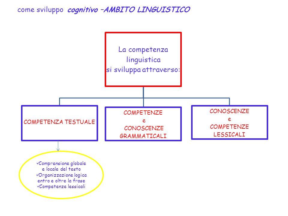 come sviluppo cognitivo –AMBITO LINGUISTICO