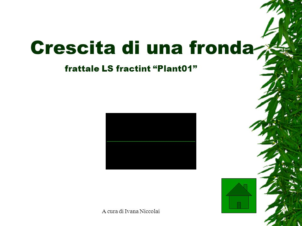 frattale LS fractint Plant01