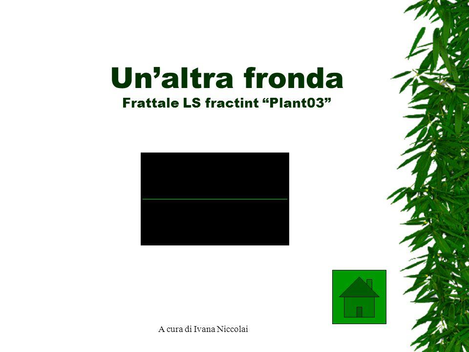 Un'altra fronda Frattale LS fractint Plant03