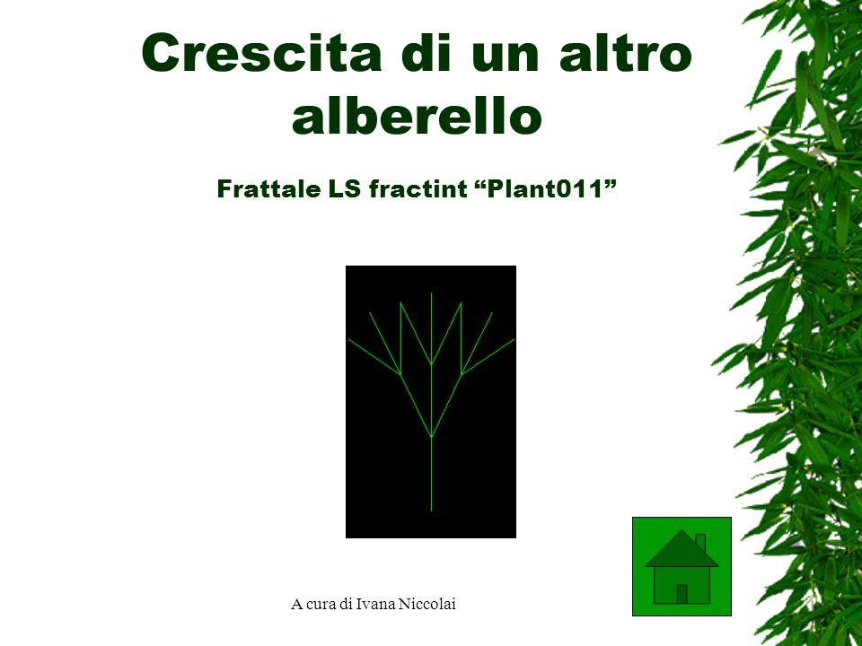 Crescita di un altro alberello Frattale LS fractint Plant011