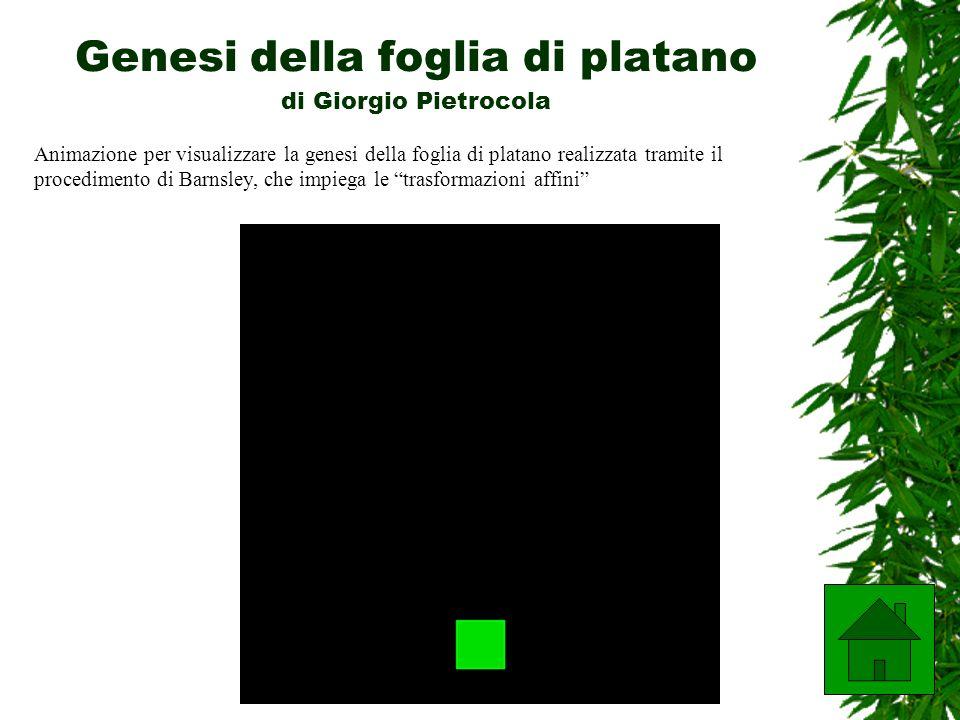 Genesi della foglia di platano di Giorgio Pietrocola