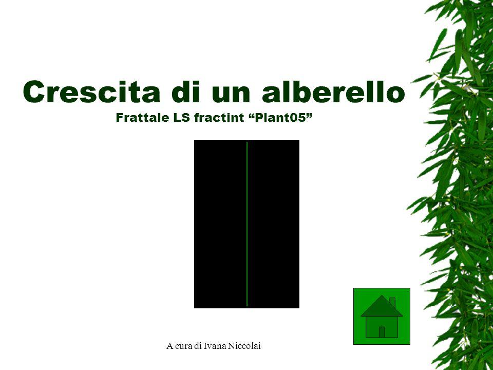 Crescita di un alberello Frattale LS fractint Plant05