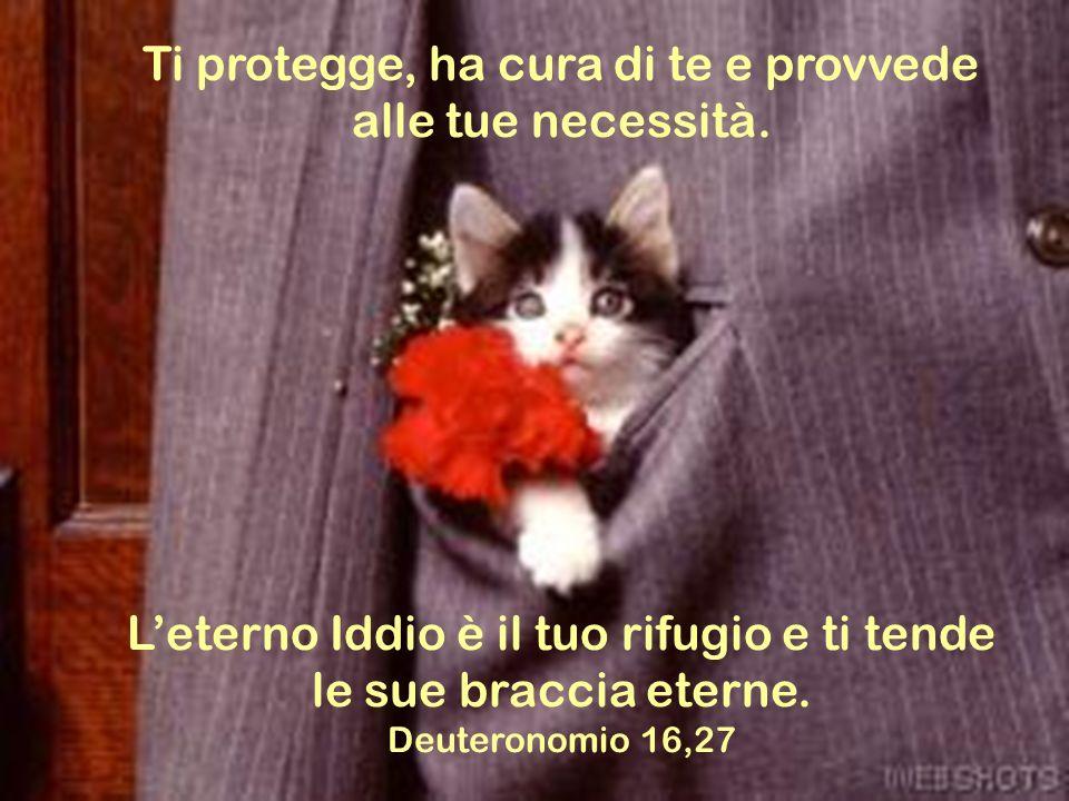 Ti protegge, ha cura di te e provvede alle tue necessità.