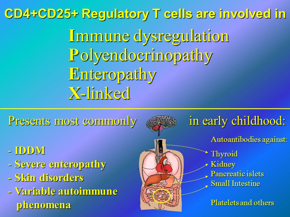 CD4+CD25+ Regulatory T cells are involved in