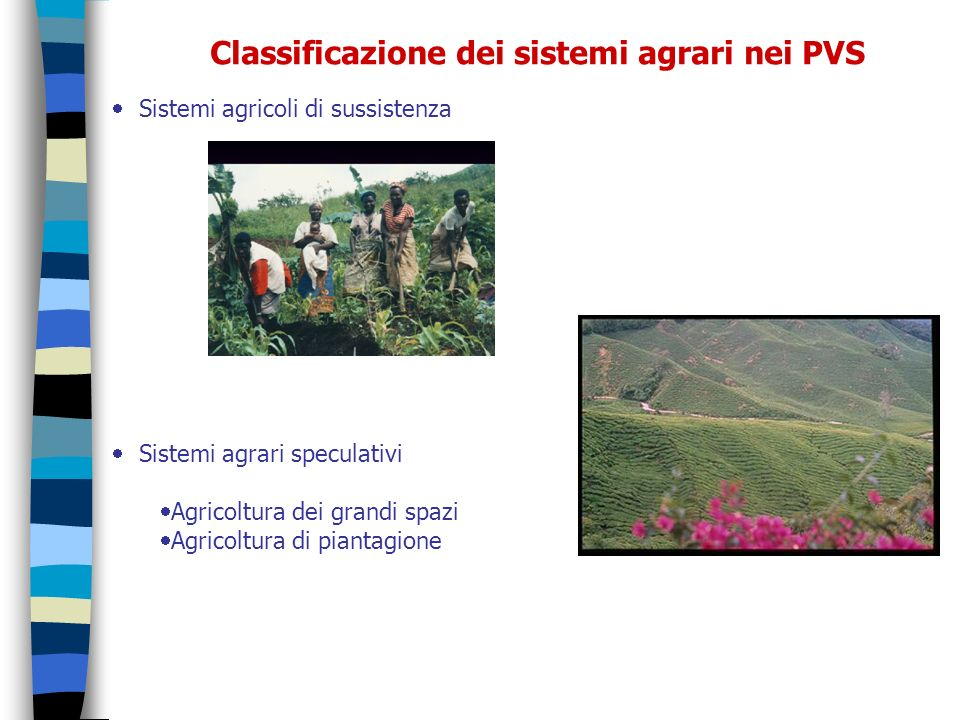 Classificazione dei sistemi agrari nei PVS