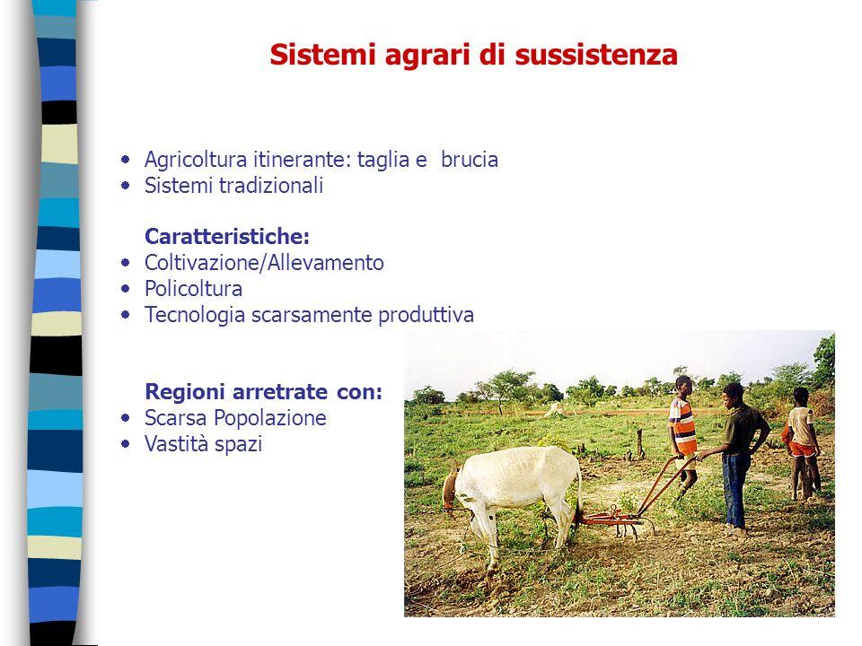 Sistemi agrari di sussistenza