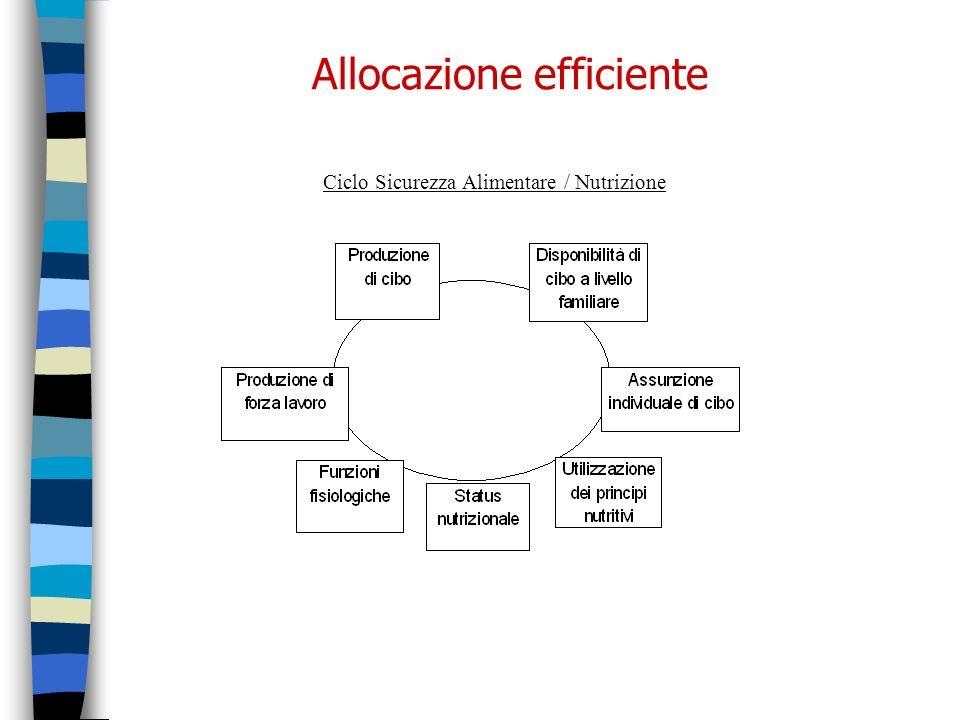 Allocazione efficiente