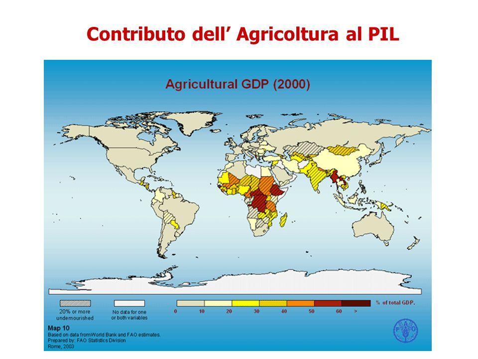 Contributo dell' Agricoltura al PIL