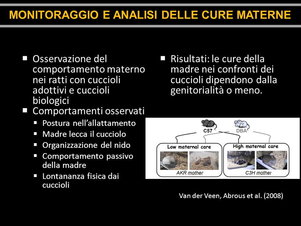 MONITORAGGIO E ANALISI DELLE CURE MATERNE