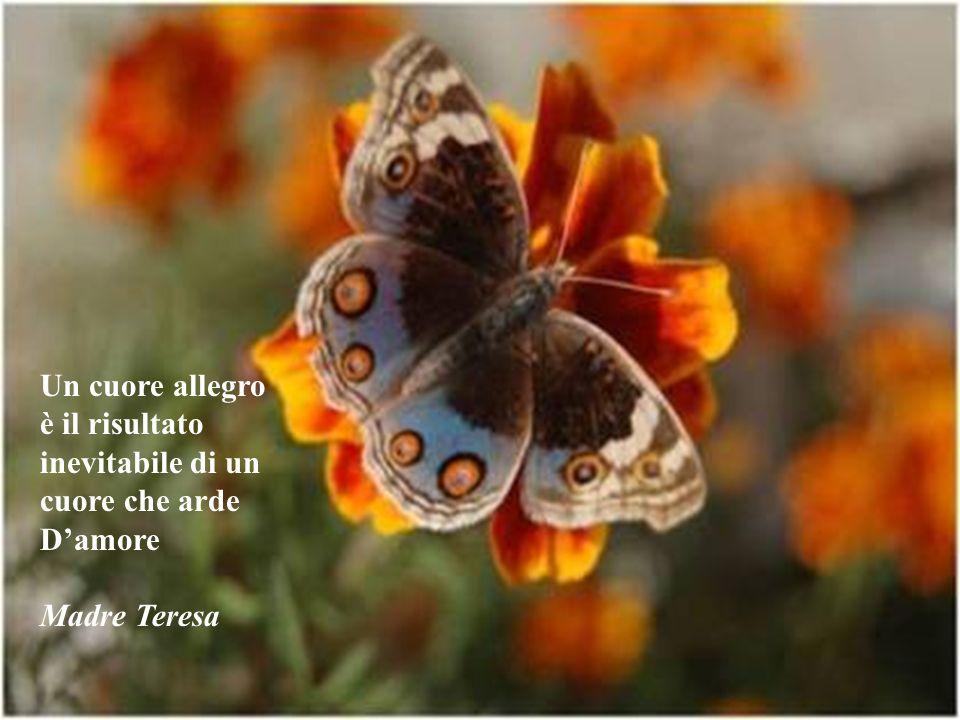 Un cuore allegro è il risultato inevitabile di un cuore che arde D'amore Madre Teresa