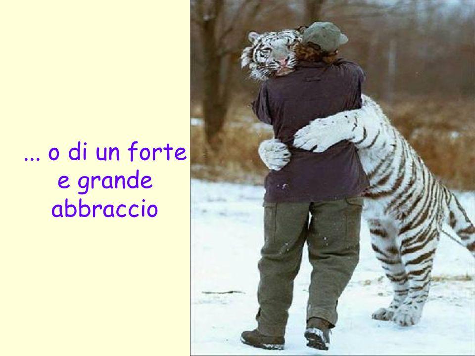 ... o di un forte e grande abbraccio