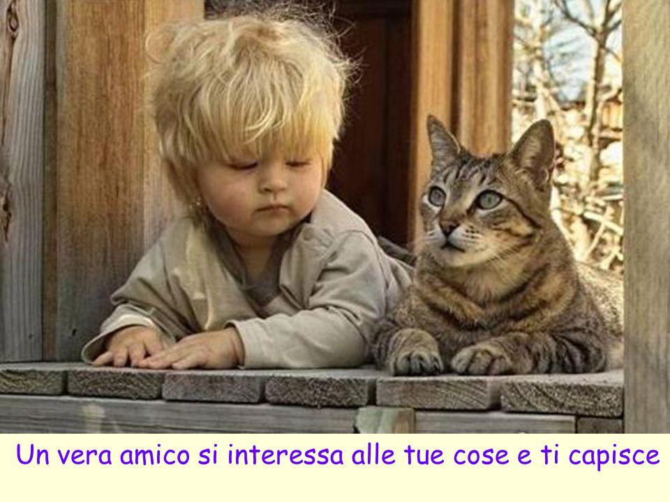 Un vera amico si interessa alle tue cose e ti capisce