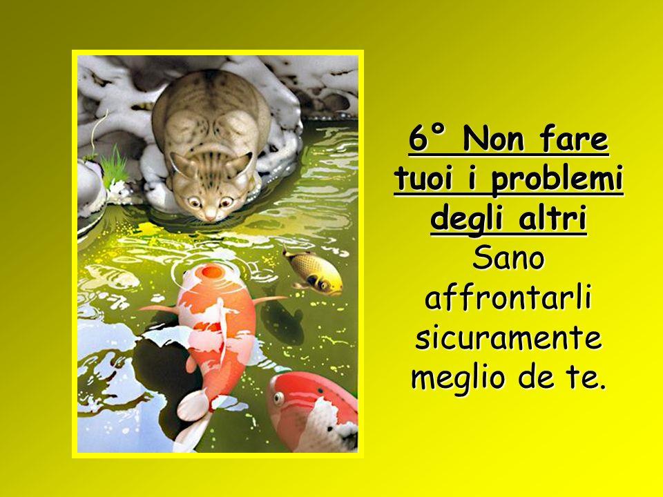 6° Non fare tuoi i problemi degli altri Sano affrontarli sicuramente meglio de te.