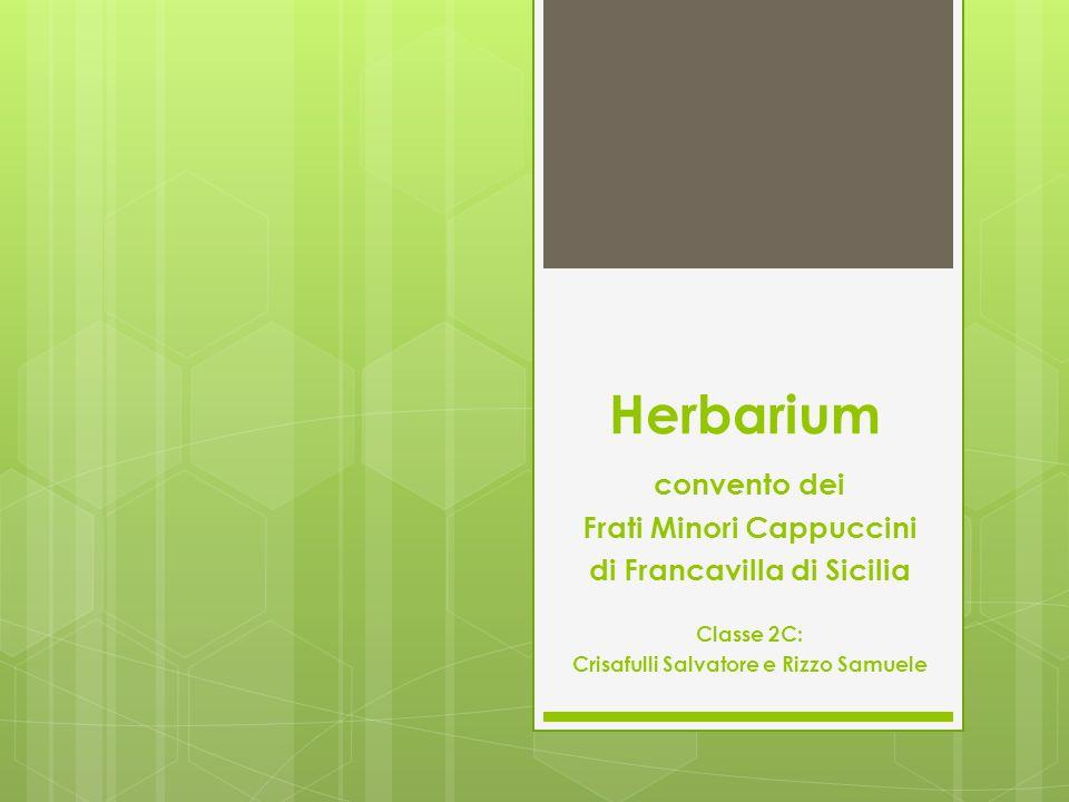 Herbarium convento dei Frati Minori Cappuccini