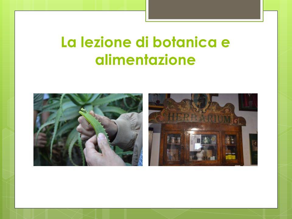 La lezione di botanica e alimentazione