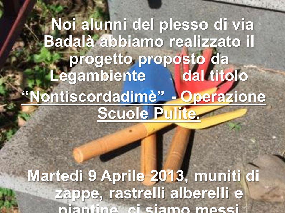 Noi alunni del plesso di via Badalà abbiamo realizzato il progetto proposto da Legambiente dal titolo Nontiscordadimè - Operazione Scuole Pulite.
