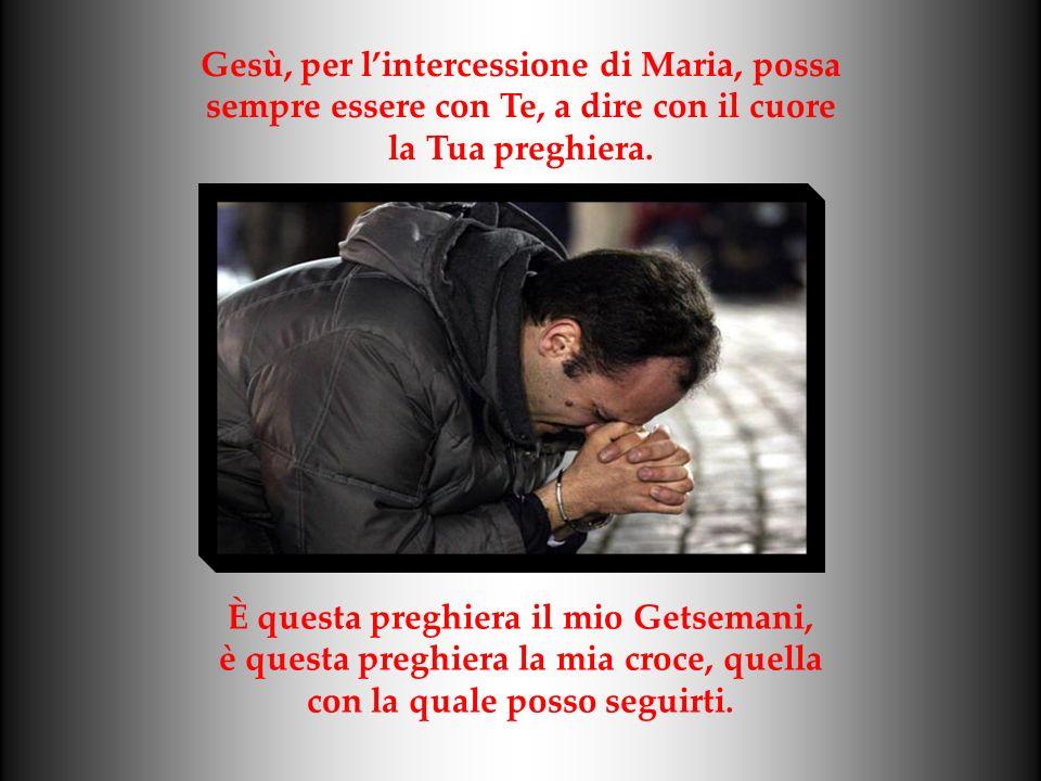 Gesù, per l'intercessione di Maria, possa
