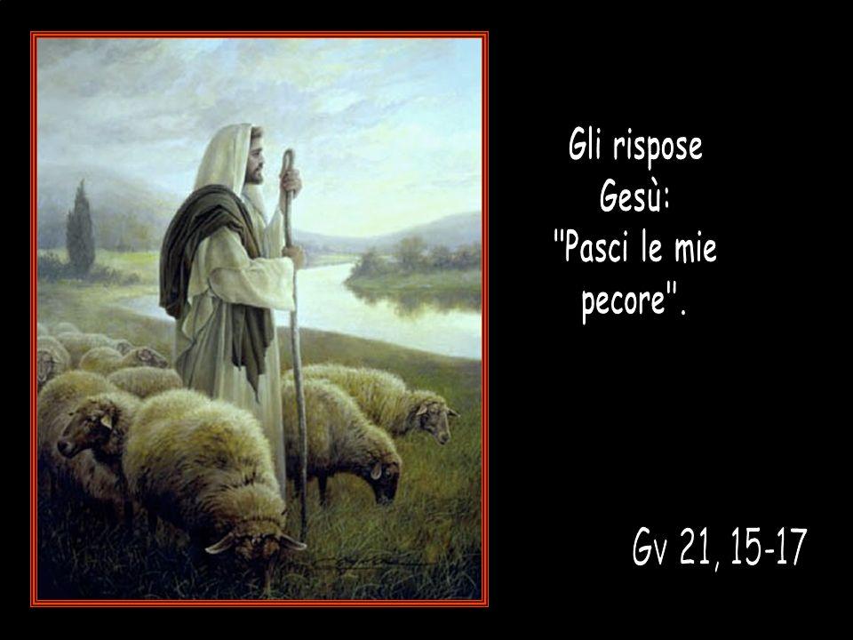 Gv 21,15-17 Gli rispose Gesù: Pasci le mie pecore . Gv 21, 15-17