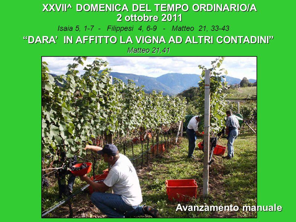 XXVII^ DOMENICA DEL TEMPO ORDINARIO/A