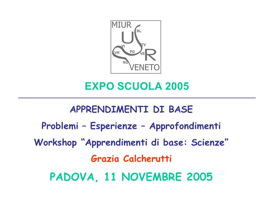 EXPO SCUOLA 2005 PADOVA, 11 NOVEMBRE 2005 APPRENDIMENTI DI BASE
