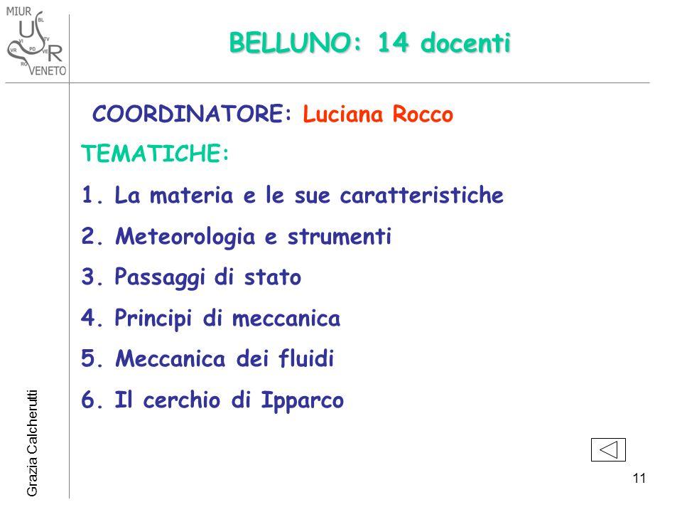 BELLUNO: 14 docenti COORDINATORE: Luciana Rocco TEMATICHE: