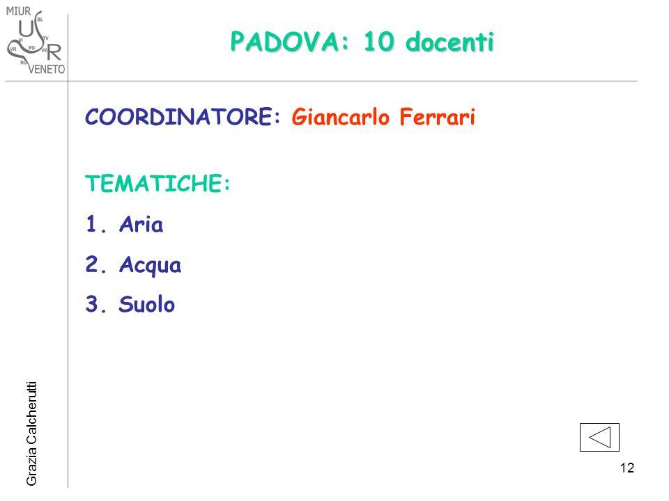 PADOVA: 10 docenti COORDINATORE: Giancarlo Ferrari TEMATICHE: Aria