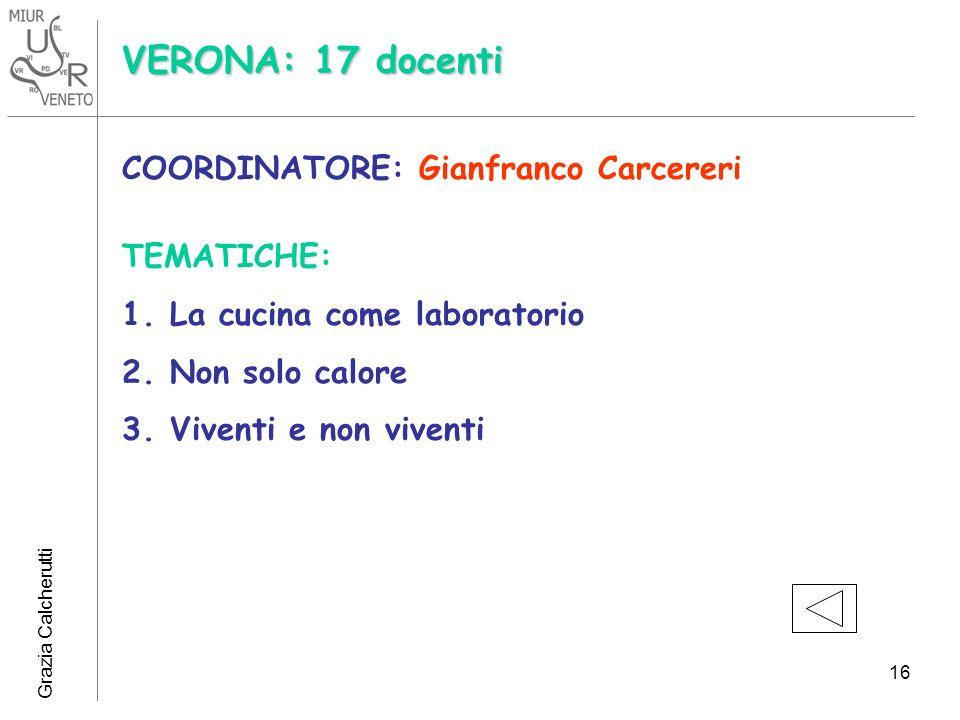 VERONA: 17 docenti COORDINATORE: Gianfranco Carcereri TEMATICHE:
