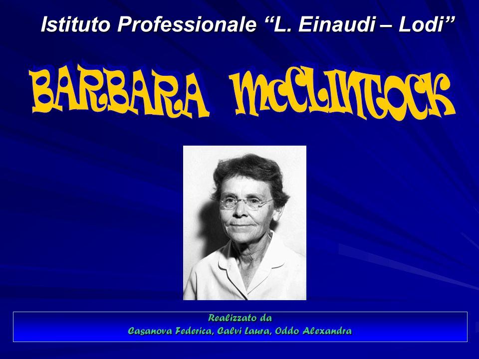 Istituto Professionale L. Einaudi – Lodi