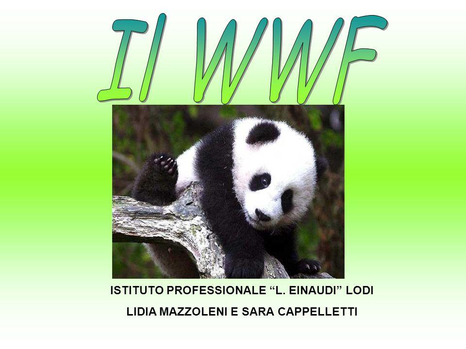 Il WWF ISTITUTO PROFESSIONALE L. EINAUDI LODI