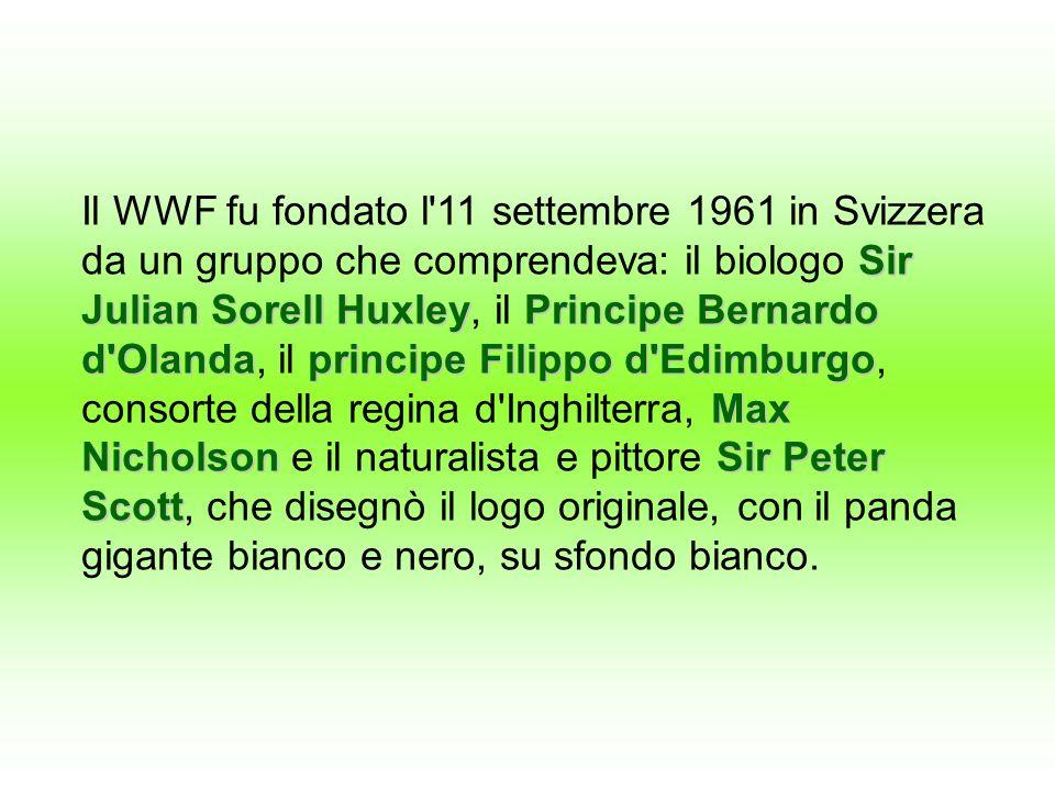 Il WWF fu fondato l 11 settembre 1961 in Svizzera da un gruppo che comprendeva: il biologo Sir Julian Sorell Huxley, il Principe Bernardo d Olanda, il principe Filippo d Edimburgo, consorte della regina d Inghilterra, Max Nicholson e il naturalista e pittore Sir Peter Scott, che disegnò il logo originale, con il panda gigante bianco e nero, su sfondo bianco.