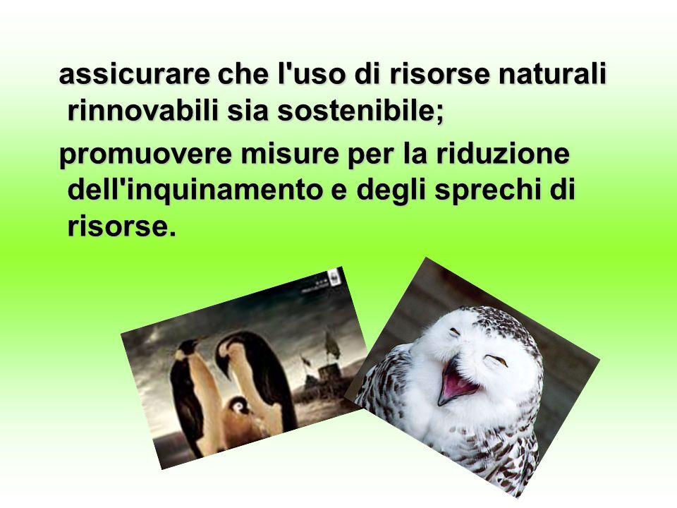 assicurare che l uso di risorse naturali rinnovabili sia sostenibile;