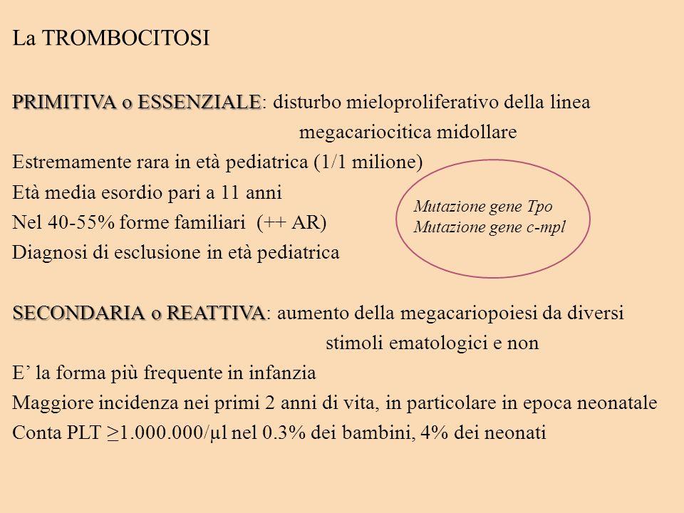 La TROMBOCITOSI PRIMITIVA o ESSENZIALE: disturbo mieloproliferativo della linea. megacariocitica midollare.