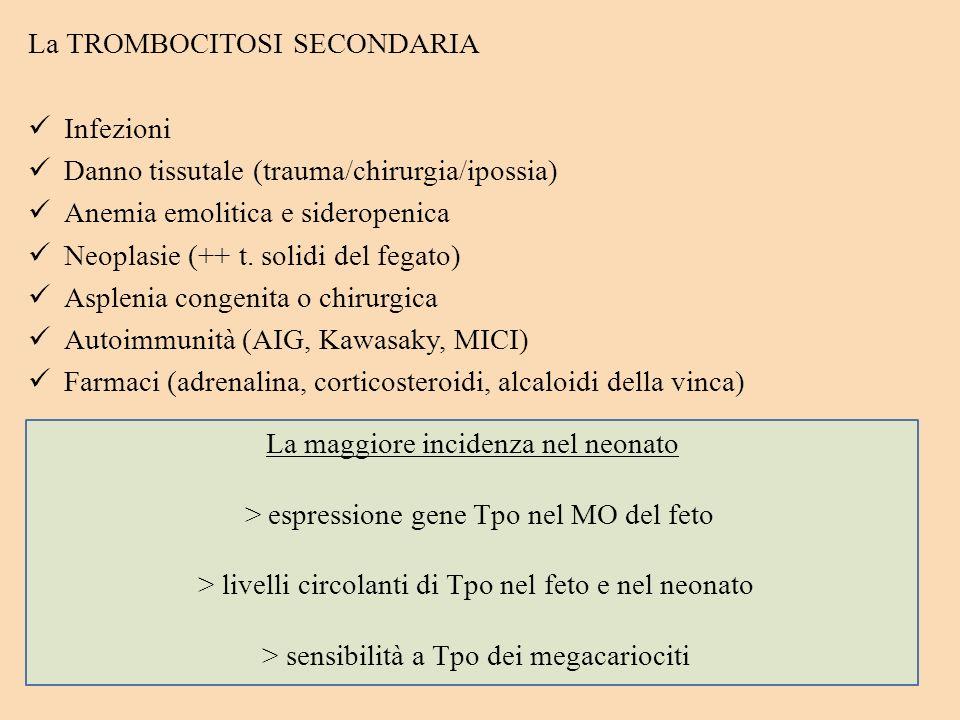 La TROMBOCITOSI SECONDARIA Infezioni