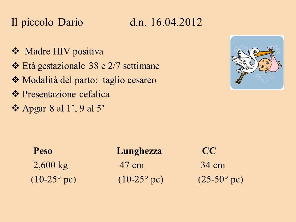 Il piccolo Dario d.n. 16.04.2012 Madre HIV positiva
