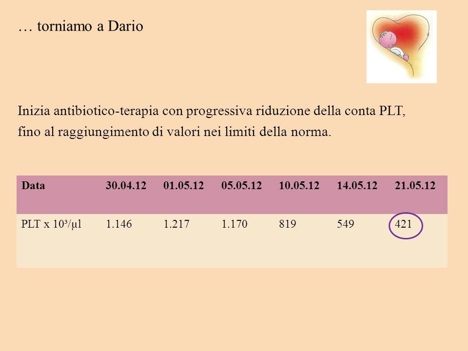 … torniamo a DarioInizia antibiotico-terapia con progressiva riduzione della conta PLT, fino al raggiungimento di valori nei limiti della norma.