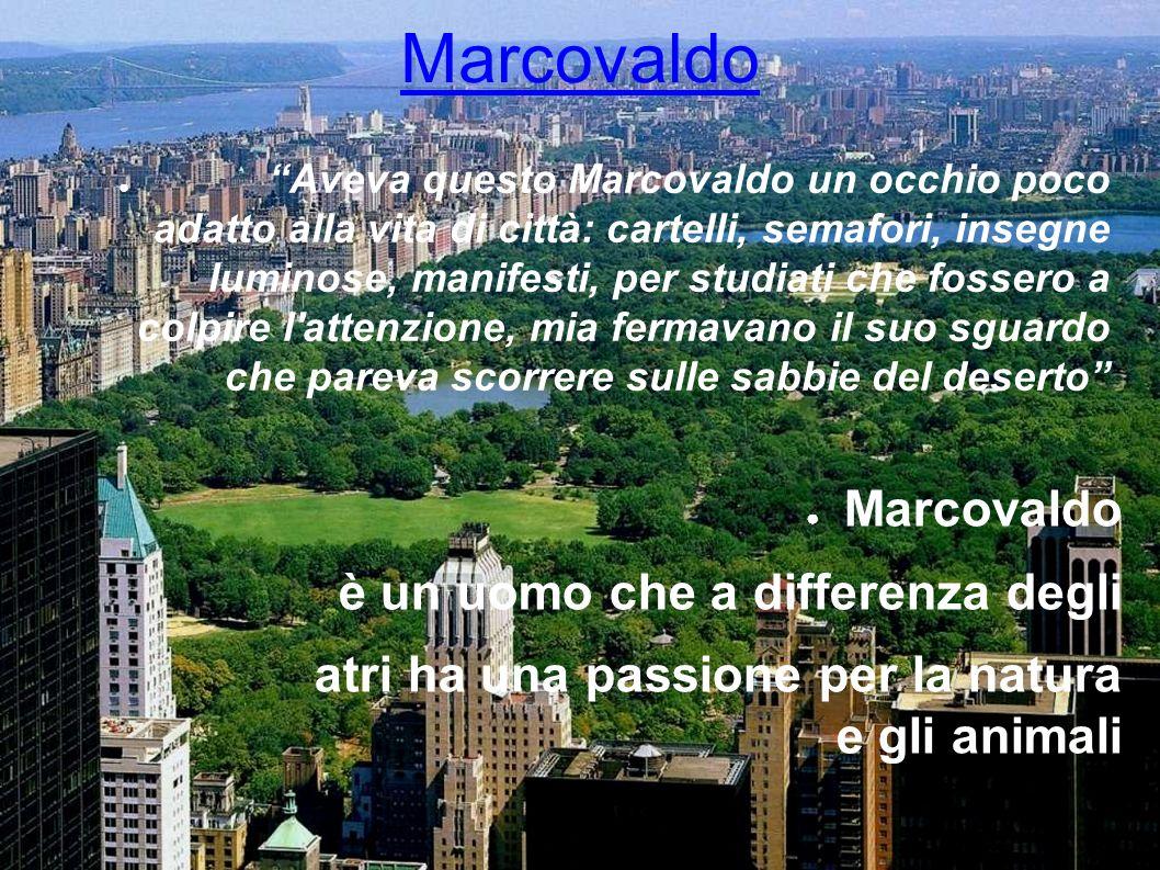 Marcovaldo Marcovaldo è un uomo che a differenza degli